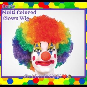 Curly Multi Colored Clown Wig